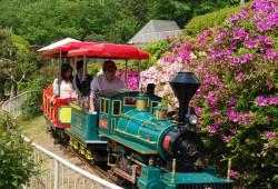 Benkei-Go (steam locomotive)