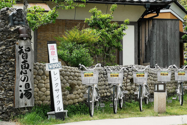 Launched a bicycle rental service