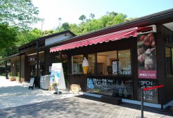 山頂單軌電車車站